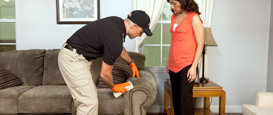 Dallas, GA carpet upholstery cleaning